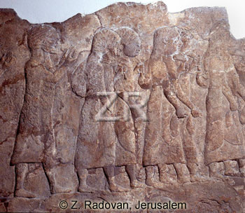 1031 Assyrian captives