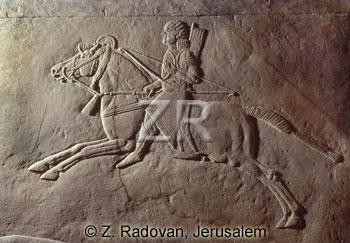 1049.-Assyrian cavalry