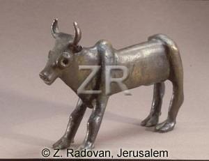 107-3 Calf Samaria
