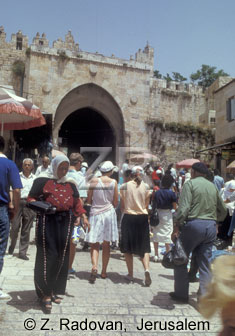 1247-3 Damask gate