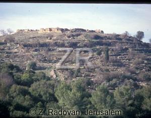 1255-5 Judean hills