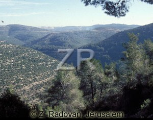 1255 Jerusalem mountains