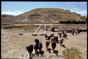 139-3 Tel Keilah