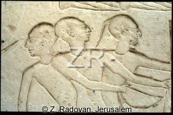 1476-2 Hittite