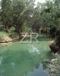 1538-4 River Jordan