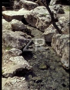 1556-7 Ein Harod spring