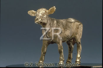 1675-1 golden calf