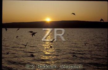 1722-4 Sea of Galilee