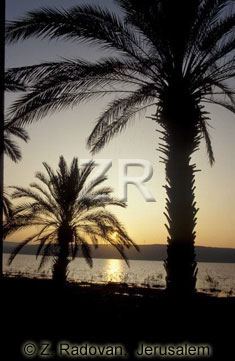 1722-9 Sea of Galilee