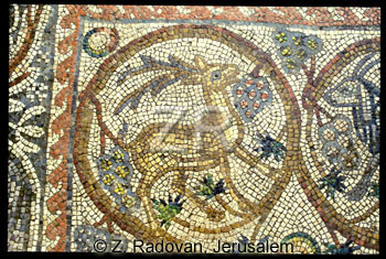 1782-8 BethShean mosaic
