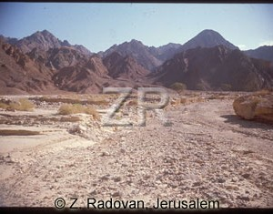 1895-1 Sinai wilderness