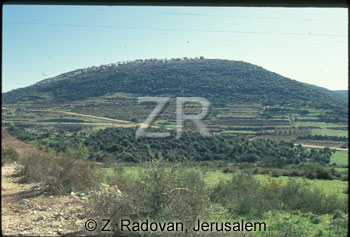 1952-1 Upper Galilee