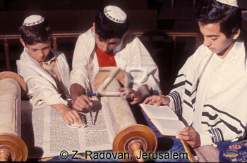 2073 Reading the Torah