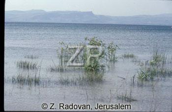 2246-11 Sea of Galilee