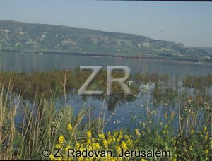 2246-12 Sea of Galilee