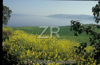 2246-8 Sea of Galilee