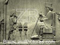227-2- King Darius