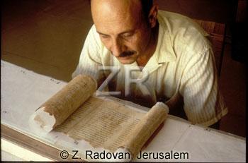 2529 Prof Yadin