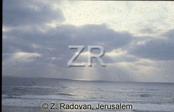 2532-7 Sea of Galilee