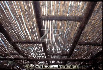 3218-1 Reed roof