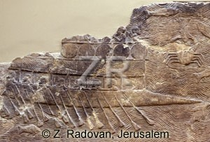 3231 Assyrian war ship