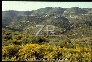 3336-3 Judean hills