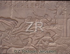 3443-1 Battle of Kadesh