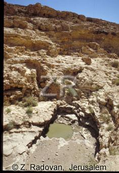 3456-1 Wadi Carcom