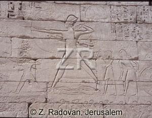 3540 Ramses III in battle