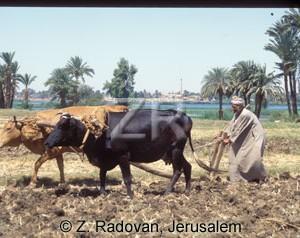 3543-3 Plowing