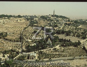 367-2 Mt.-of Olives