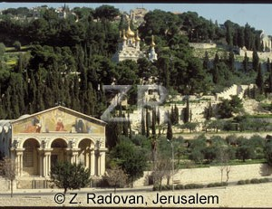367-3 Mt.-of Olives