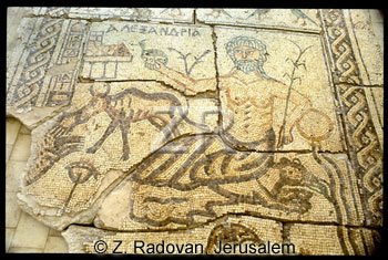 3770 BethShean mosaic