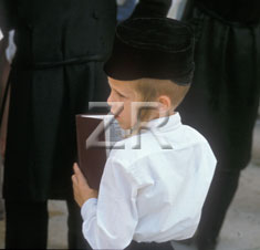 3779 Jewish boy