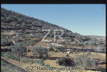 3792-3 Samaria
