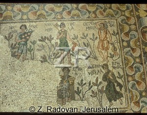 4143 BethShean mosaic