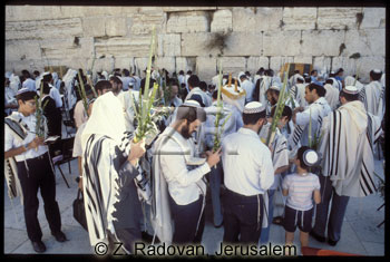 425-10 Sukkot prayer
