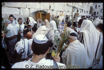 425-11 Sukkot prayer