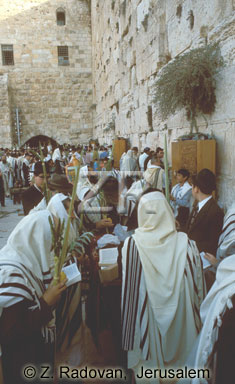425-7 Sukkot prayer