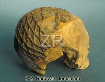 4381-2 Nahal Heimar skull