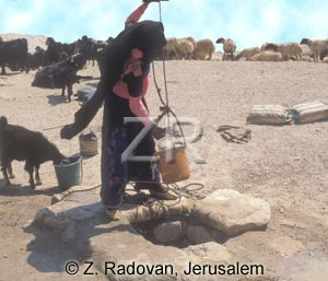4421-3 Desert well