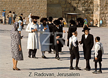 4449-7 Ultra orthodox Jews
