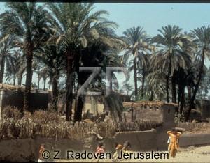 4563-3 Egyptian village