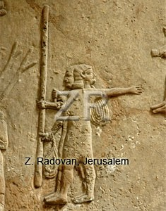5249 Assyrian building work