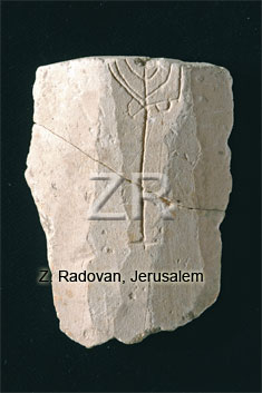 5276 Sherd with Candelabra