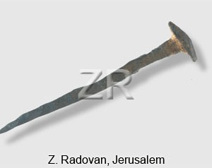 5279 Roman nail