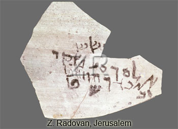 5364 Hebrew ostracon from