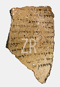 5462 Heshbon ostraca