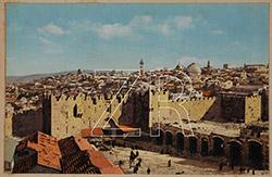 5564 Damask Gate