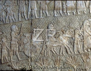 697-3 Lachish Captives